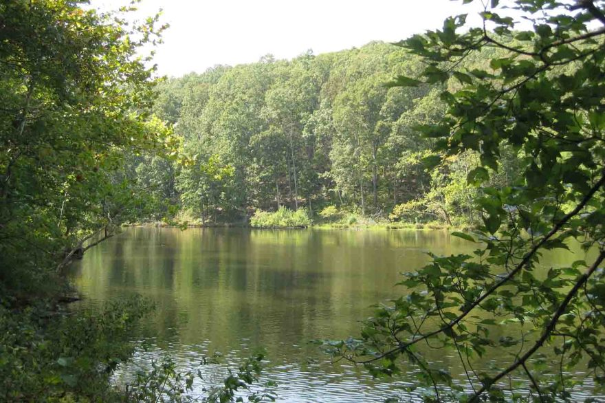 Pounds Hollow Recreation Area, Shawnee National Forest