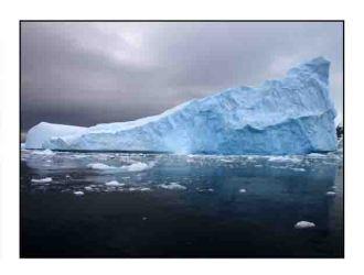 iceberg website copy