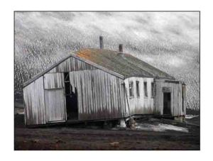 weathered the storm website copy