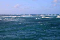 IMG_3780 waves