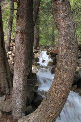 IMG_4108 creek