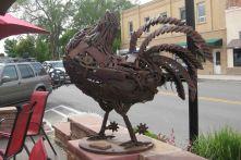 IMG_4267 headless chicken