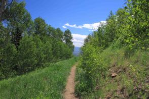 IMG_4182 path