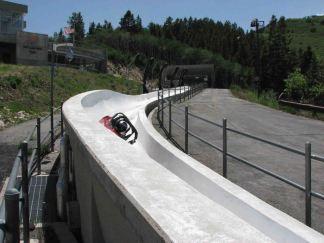 photo 2 (10) bobsled