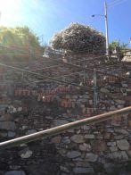 IMG_0333 steps
