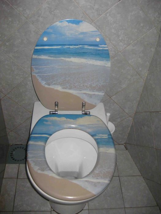 How about this decorated toilet at Belforte