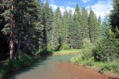 IMG_5452 creek