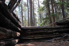 IMG_5471 cabin