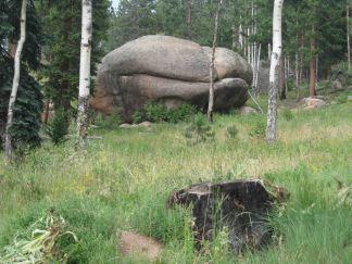IMG_5494 rock