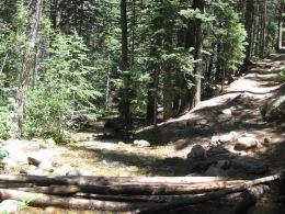 IMG_5594 creek