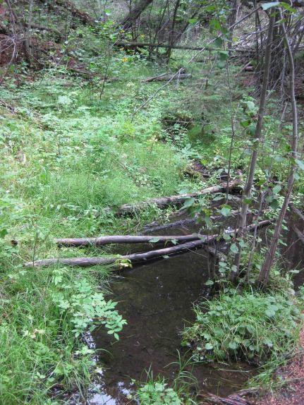 IMG_5677 creek