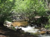 IMG_5685 buffalo creek