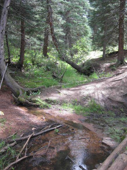 IMG_5694 final creek