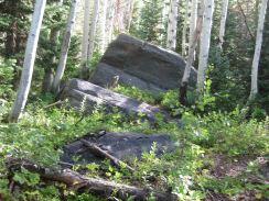 IMG_5721 rock