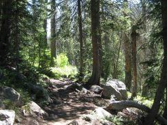 IMG_5731 path