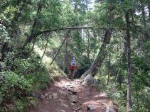 IMG_5820 trail 7