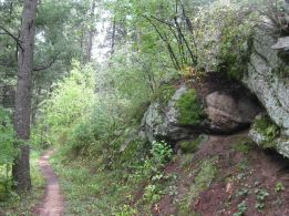 IMG_5848 trail