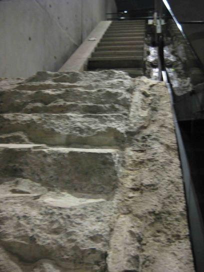 IMG_5896 survivor stairs