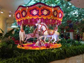 IMG_0470 carousel