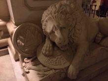 IMG_0806 lion