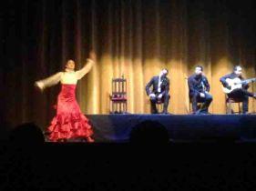 IMG_2195 flamenco use