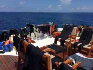 IMG_1567 dive gear