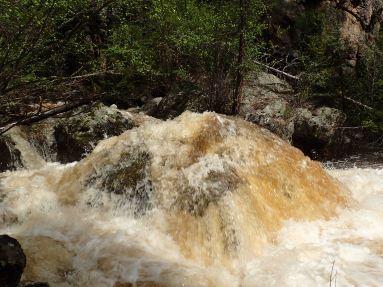 craig creek