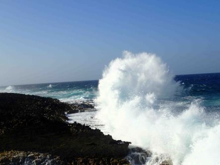 coastline with wave