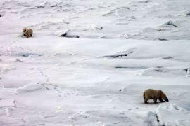 IMG_9111 three bears adventuresofacouchsurfer