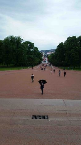 View from Royal Palace