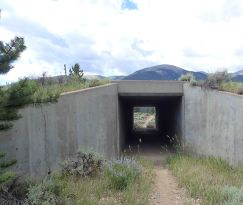 only pedestrian underpass on trail