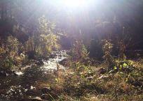 20161020_163806605_ios-creek