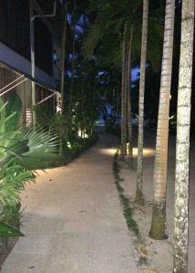 20161026_225940444_ios-walkway