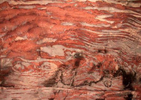 img_0104-sandstone