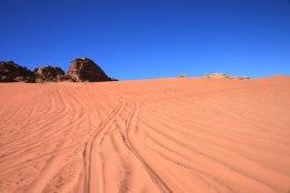 img_0323-dune