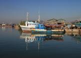 img_2229-harbor