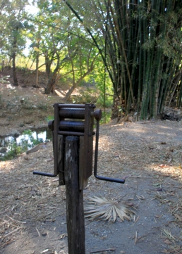 img_2286-sugarcane-press