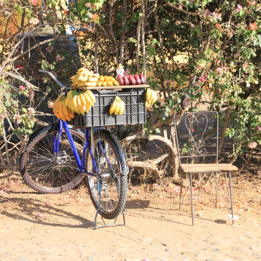 img_2361-bike