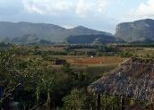 p2072172-organic-farm-view