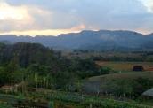 p2072176-organic-farm-view