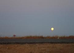 p2102243-moon