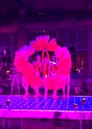 20170308_215108254_iOS-dance