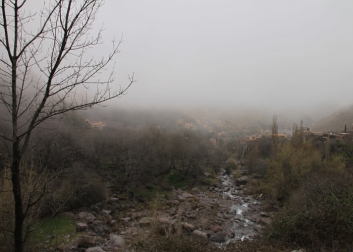 IMG_2443-view