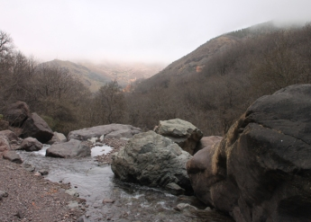 IMG_2451-creek