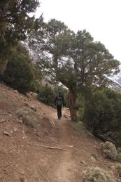 IMG_2638-hiking