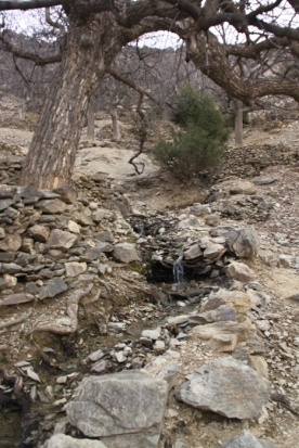 IMG_2670-creek