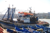 IMG_2883-boats