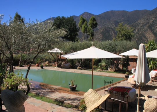 IMG_2965-pool