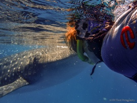 Jo and whale shark
