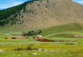 our neighbors on the steppe